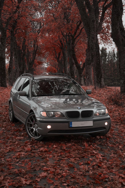grey BMW car parked under trees