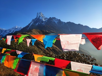 assorted-color buntings on mountains during daytime nepal zoom background