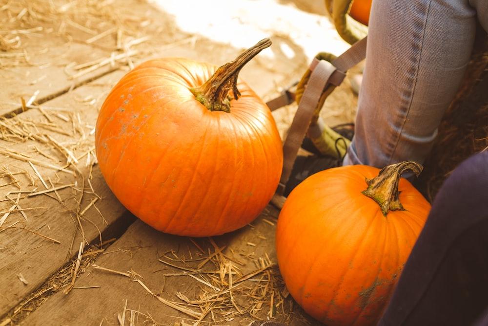 two orange pumpkins on plank