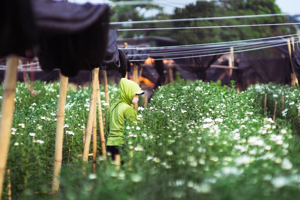 person wearing green hooded shirt standing near flower garden during daytime