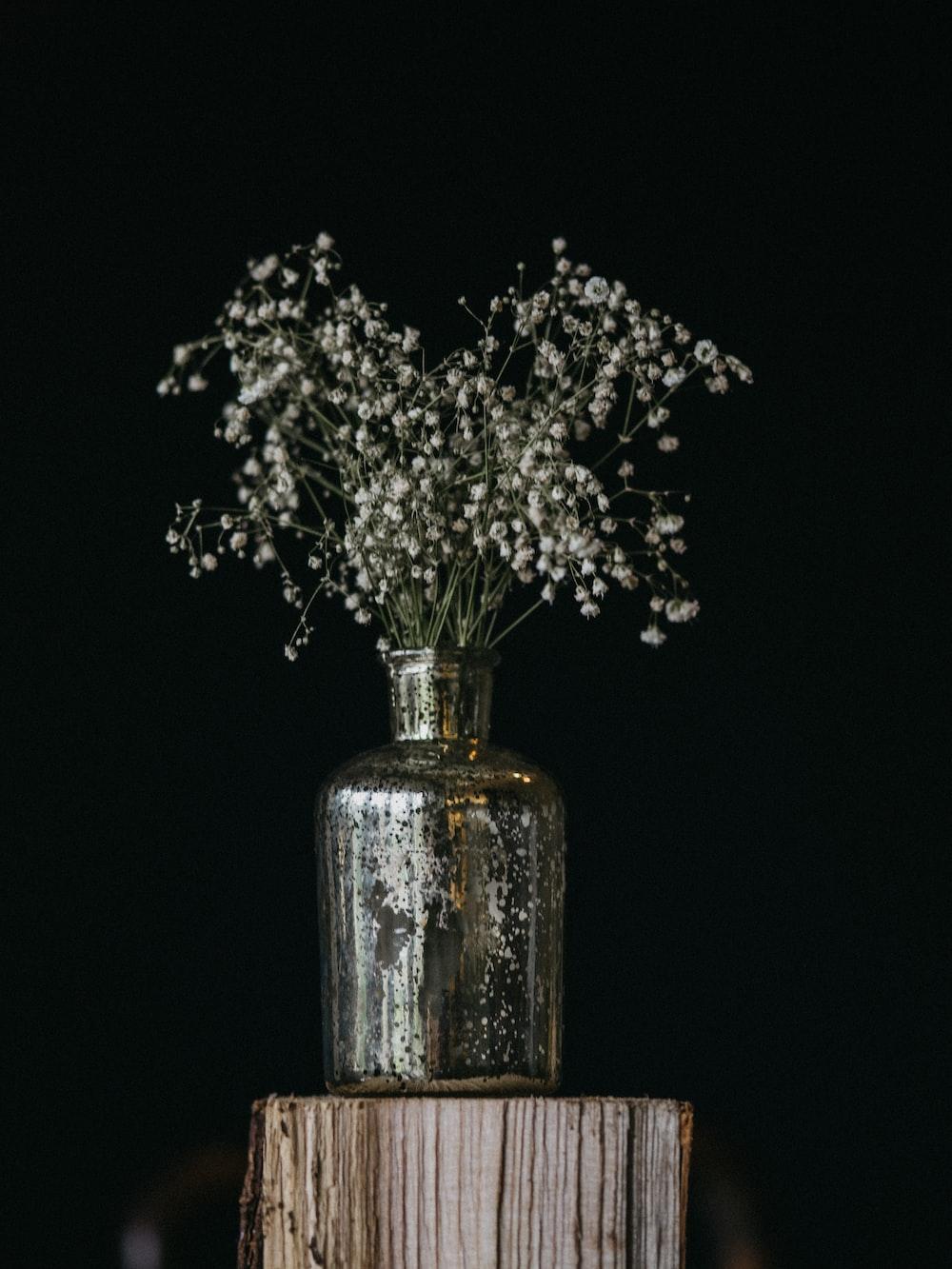 white flowers on grey pot