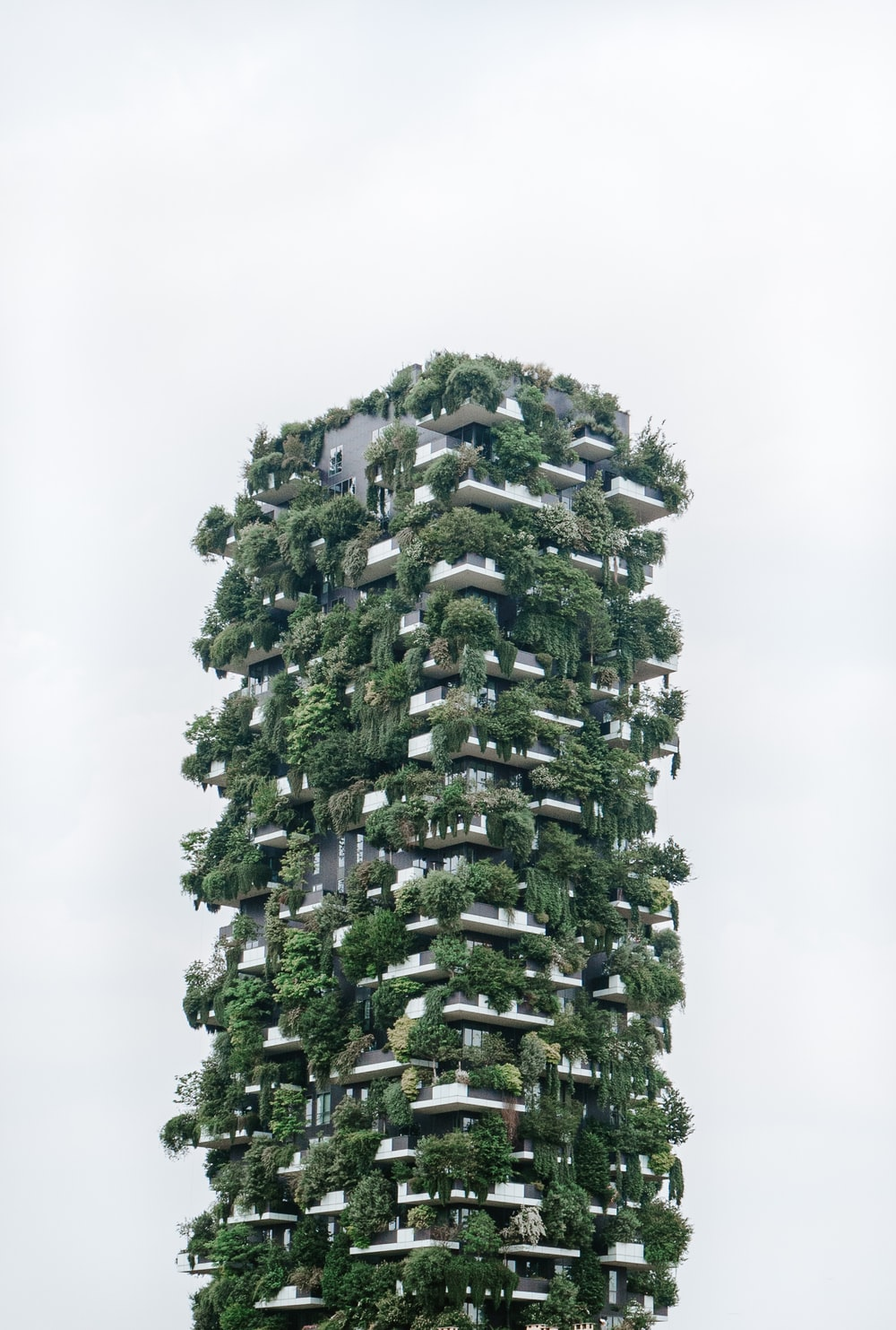 building with plants