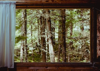 brown wooden framed window