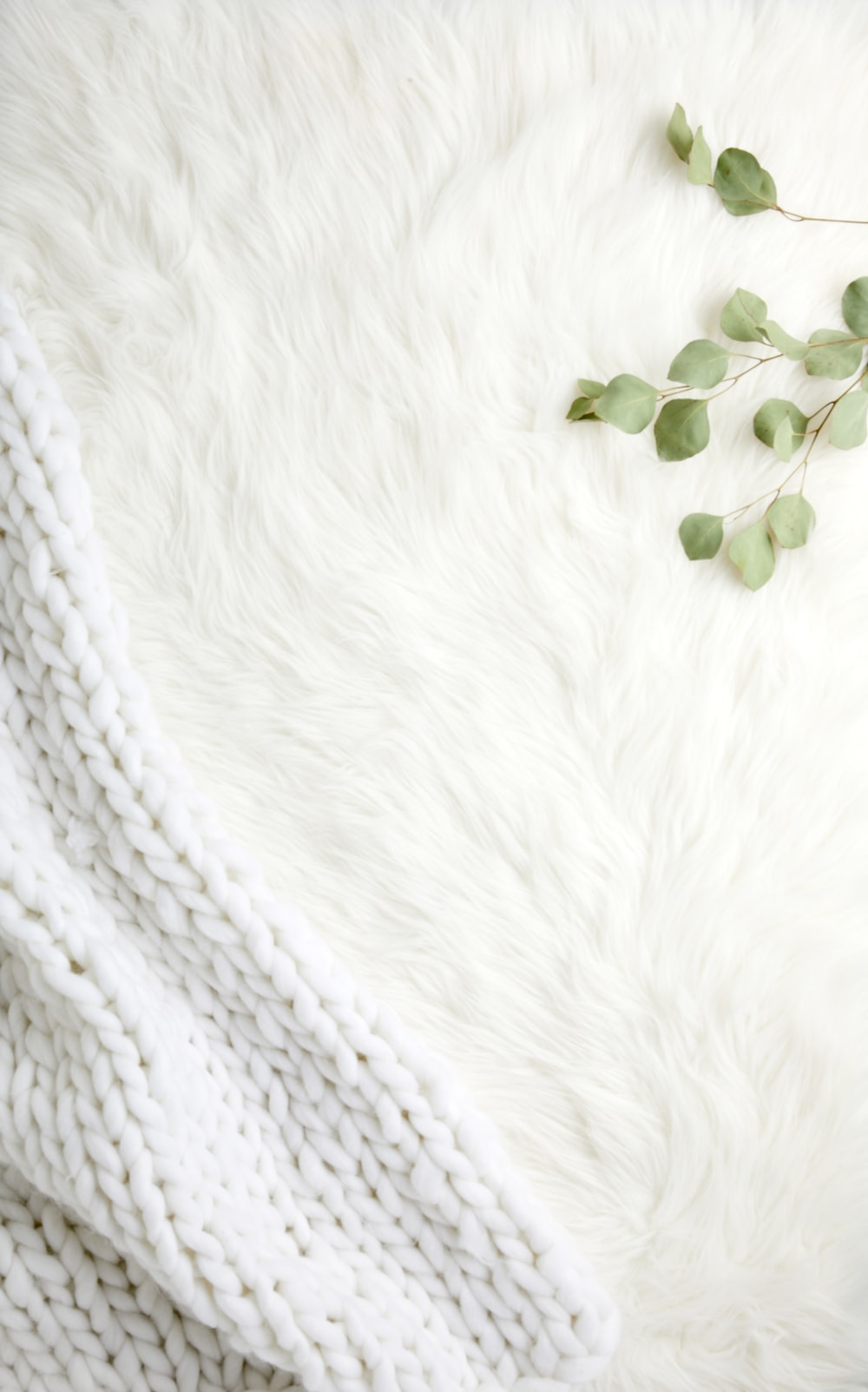 green leaves on white textile