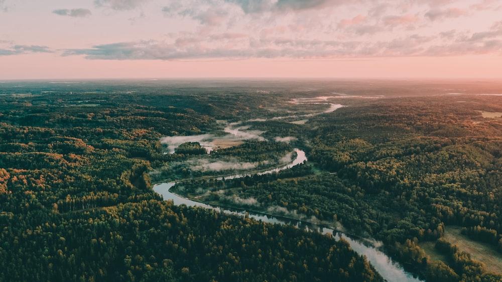 aerial photo of amazon river