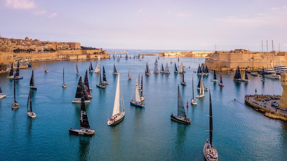 sailing boat lot