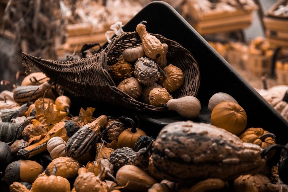 brown squash on display