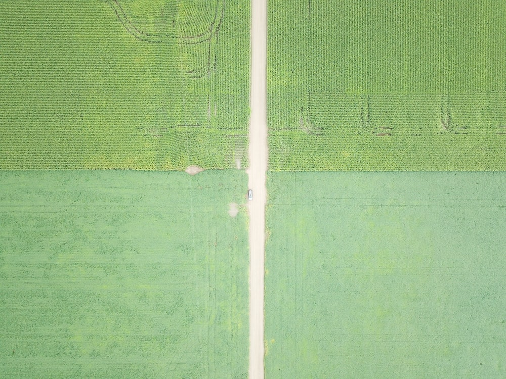 aerial photography of green fields during daytime