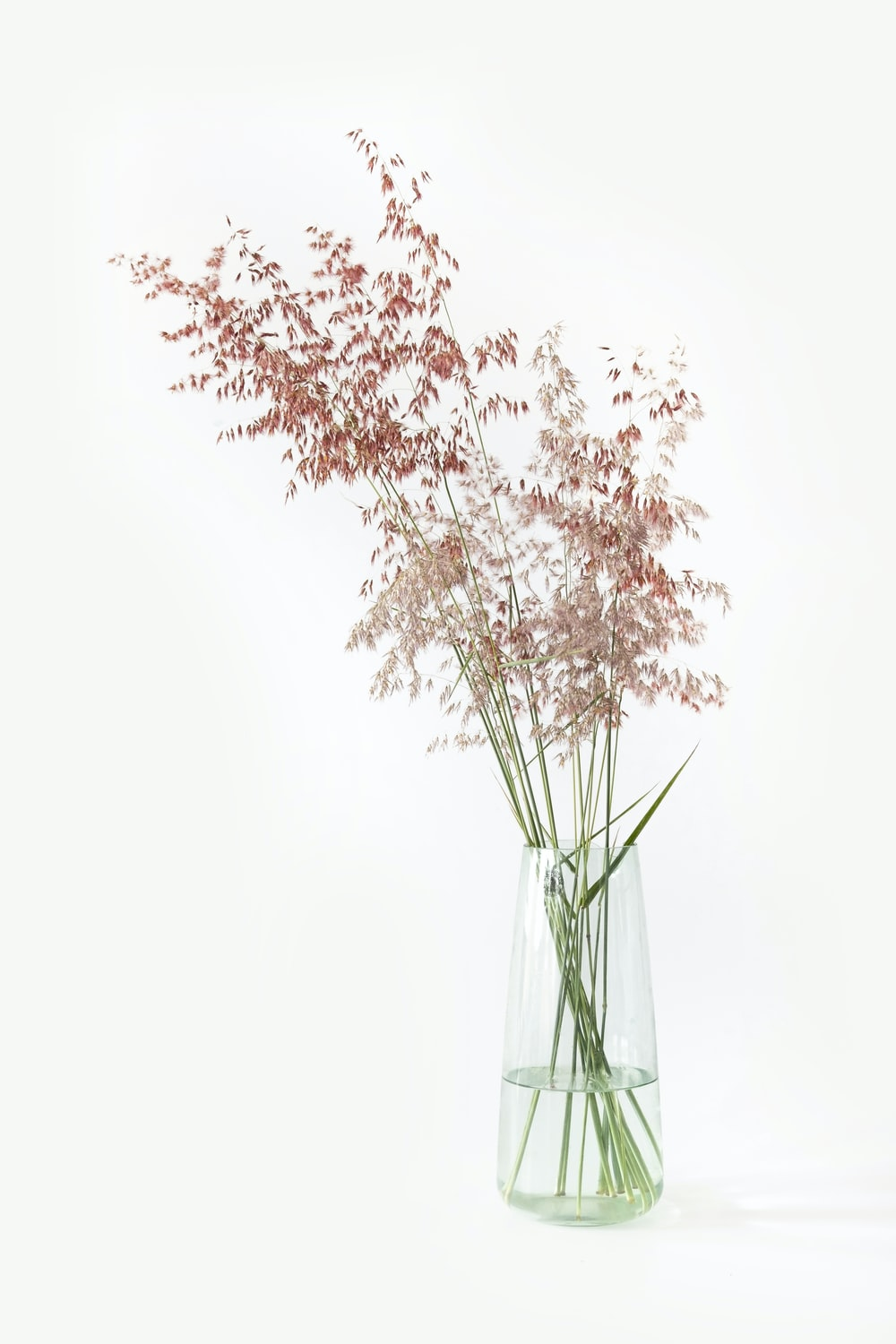 white and brown artificial flower