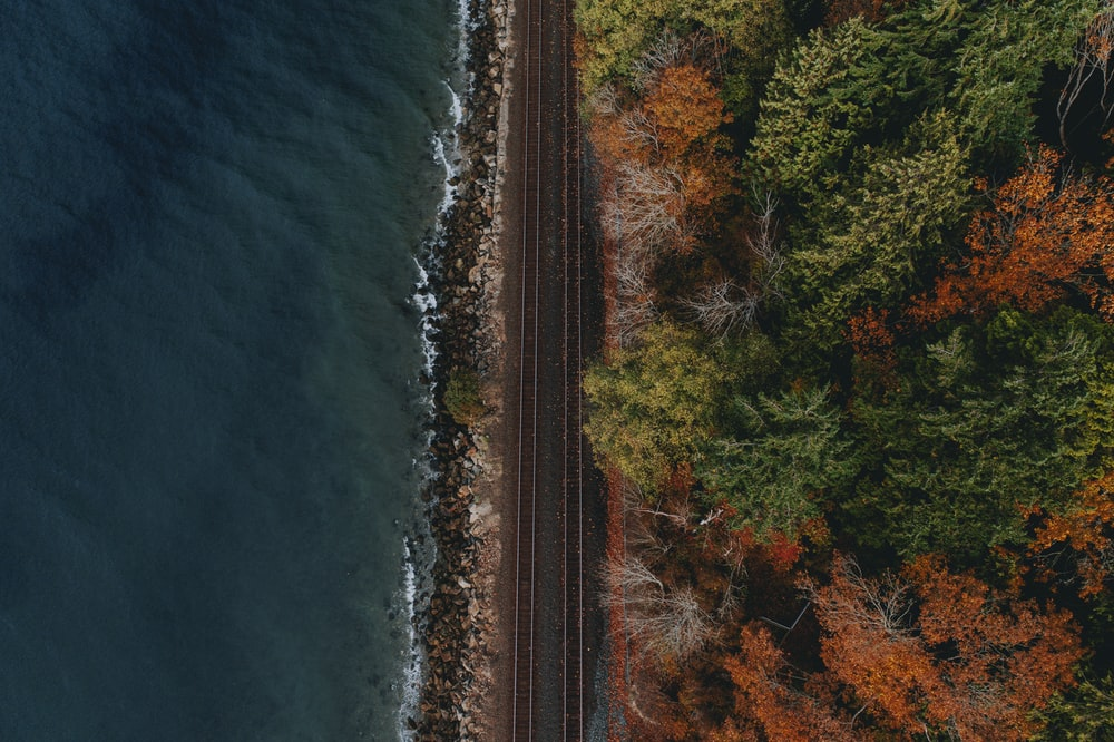 high angle photography of train rails in middle of body of water and tree field during daytime
