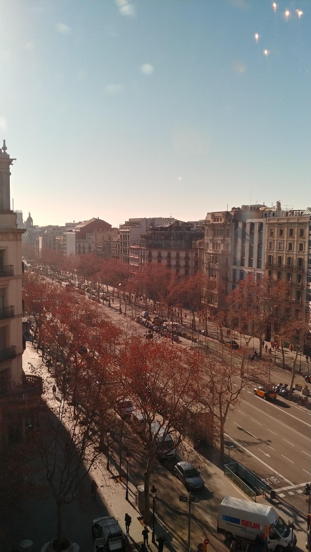 bird's-eye view photo of concrete pave street