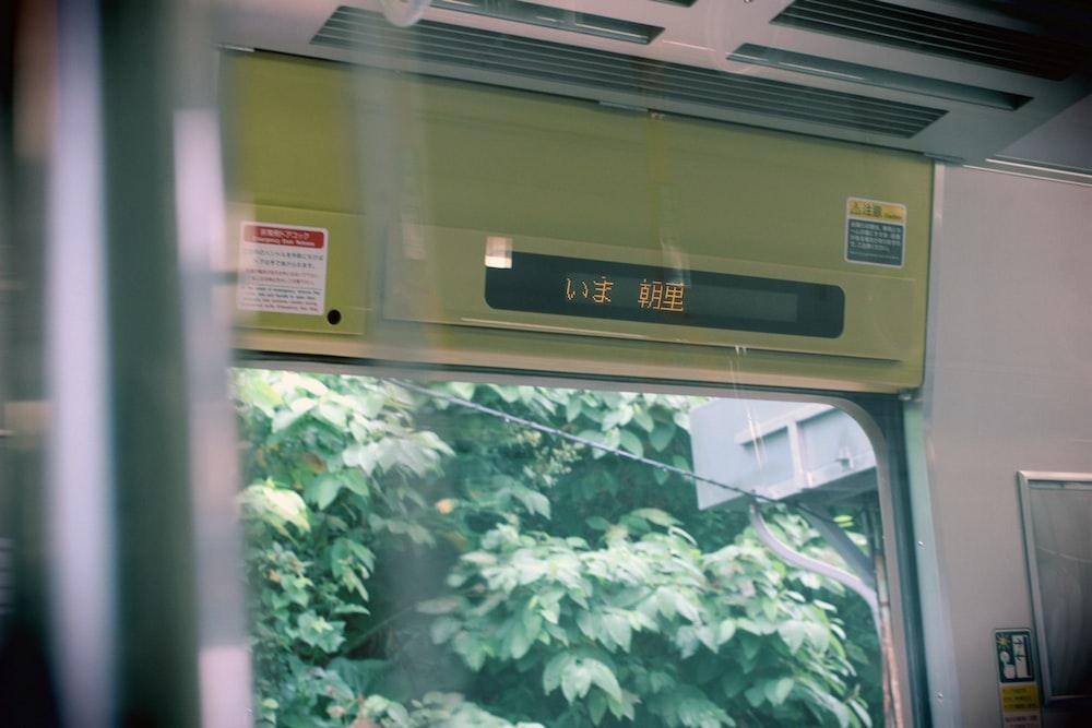 green trees outside window
