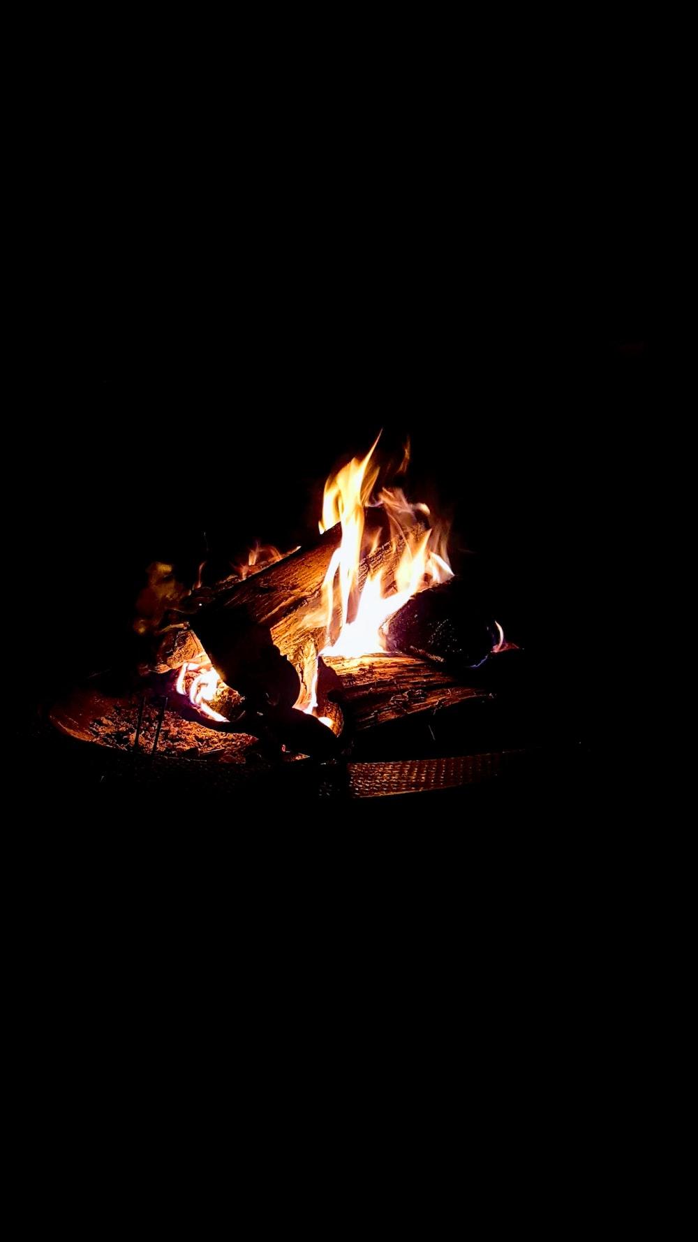 bonfire at nighttime