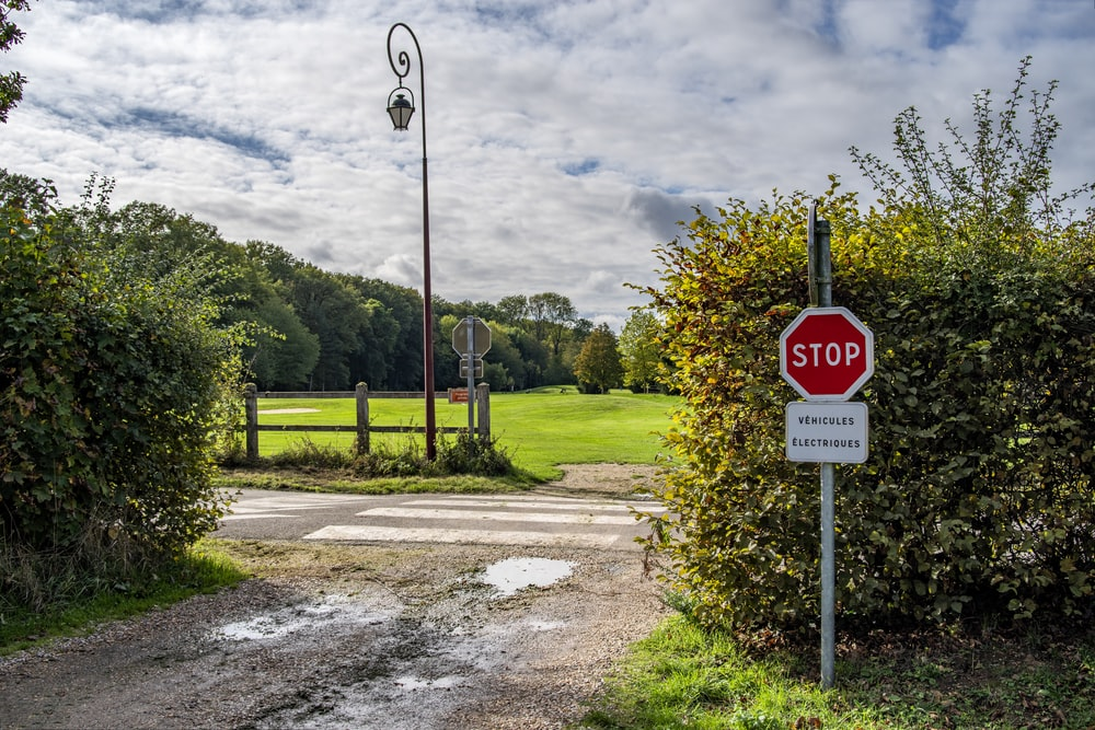 red stop signage beside green plant