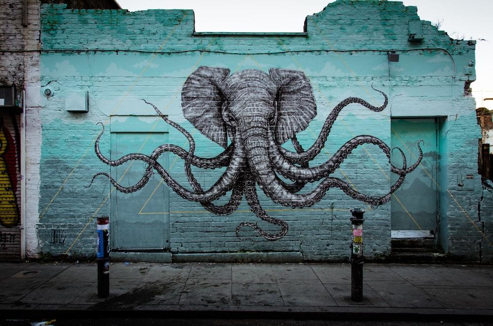 shallow focus photo of gray elephant wall art