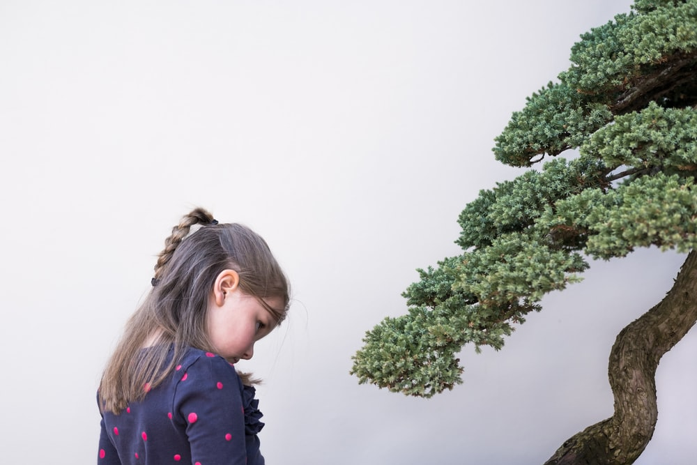 girl standing beside tree