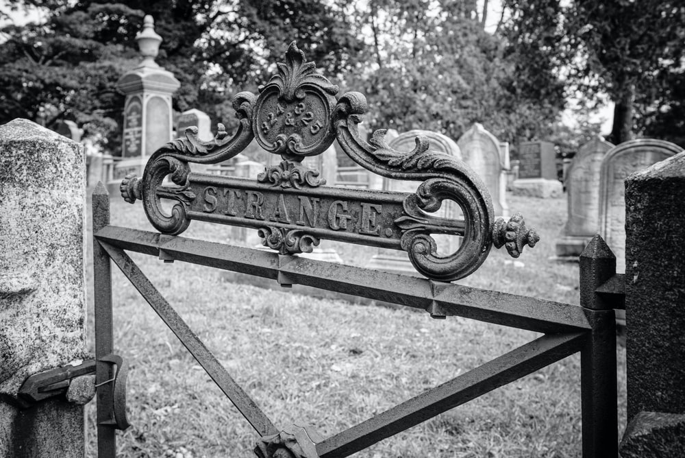 grayscale photo of strange gate