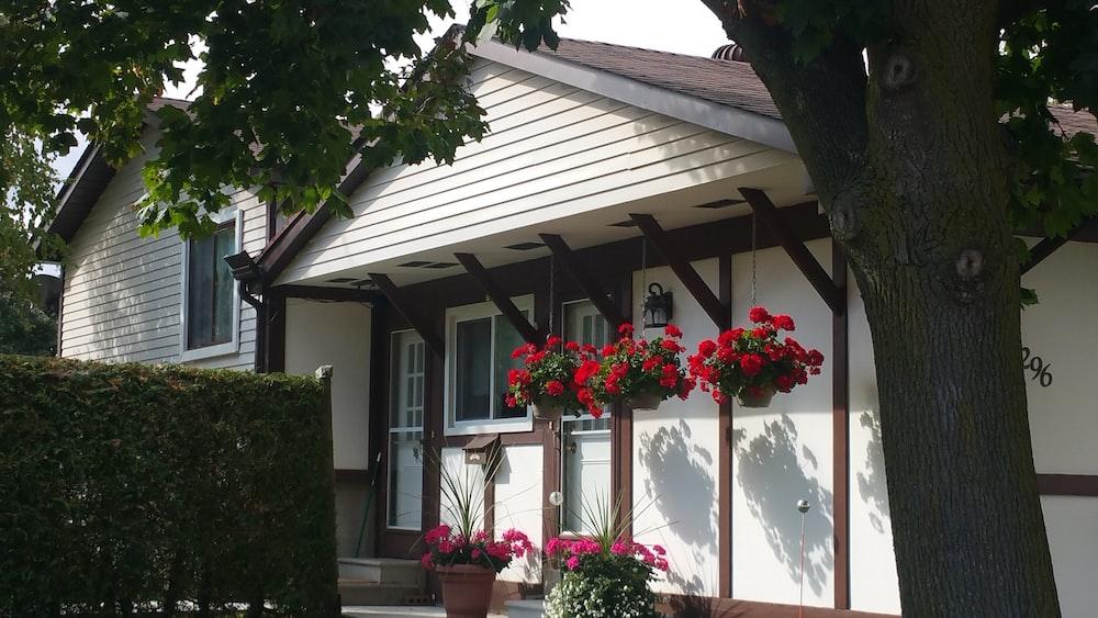 Thuê nhà đúng cách tại Canada