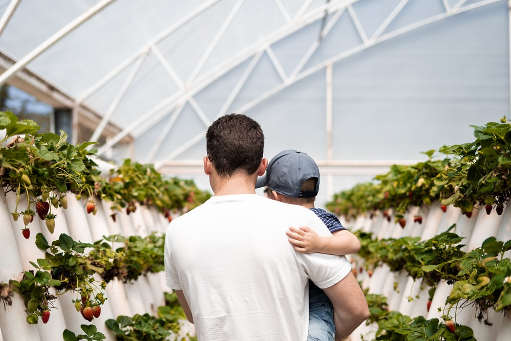 man carrying boy in green house