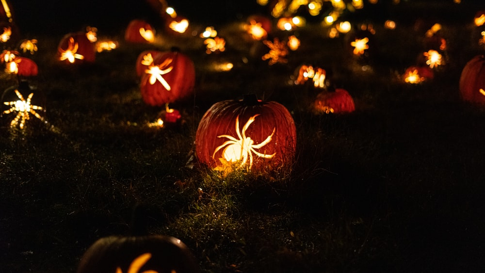 yellow spider decors during night time