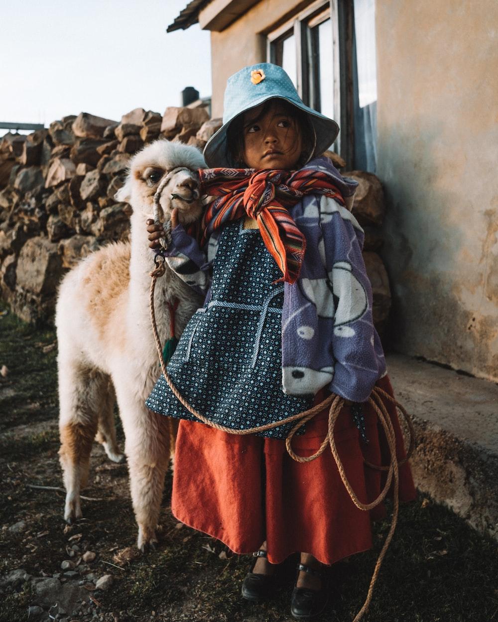 girl wearing multicolored dress standing near white llama