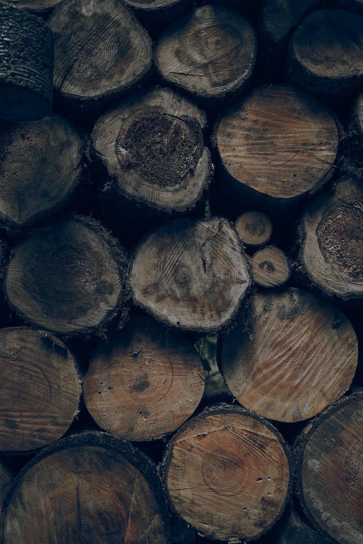 brown wood slice lot