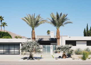 palm trees in front of white building under blue sky