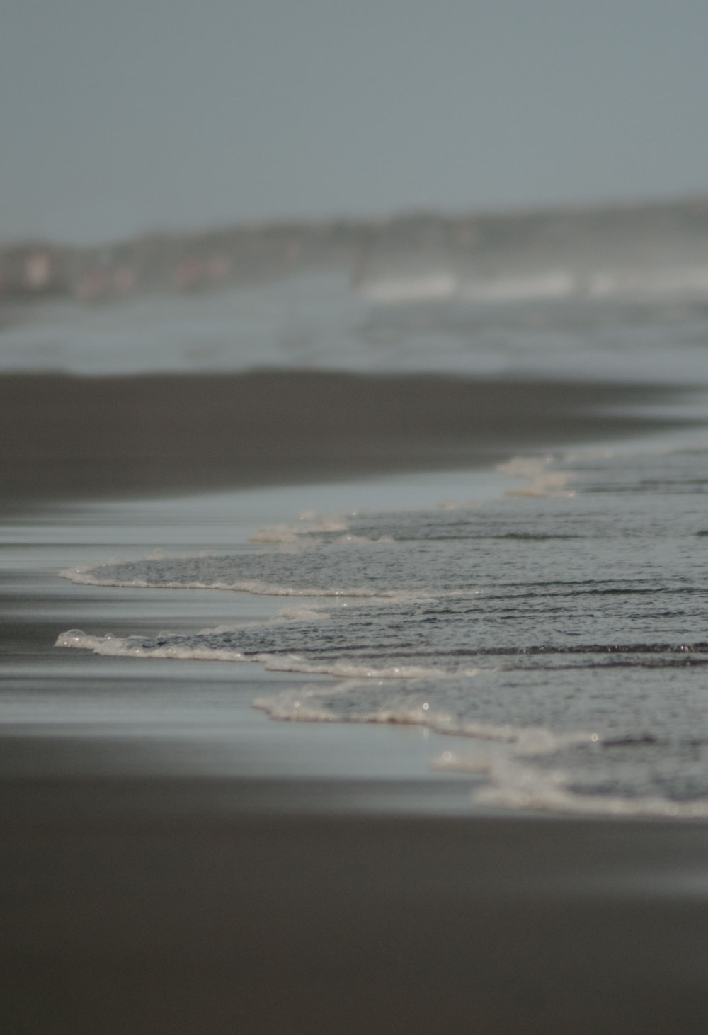 seashore on selective focus photography