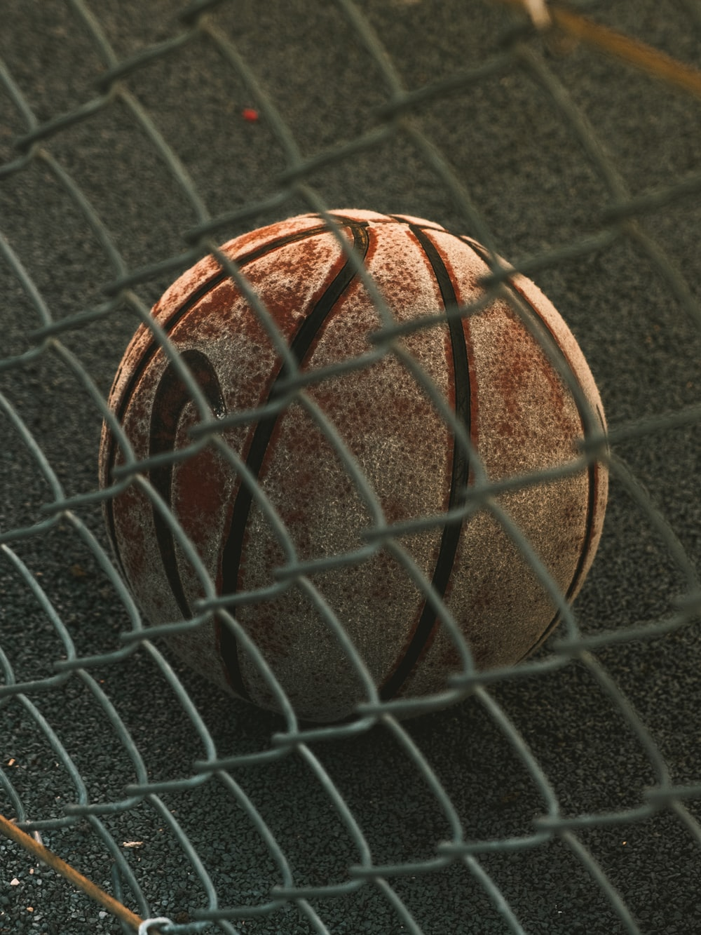 brown and black basketball with autograph