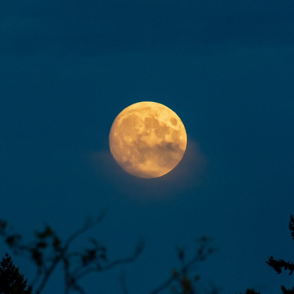 full moon view during night time