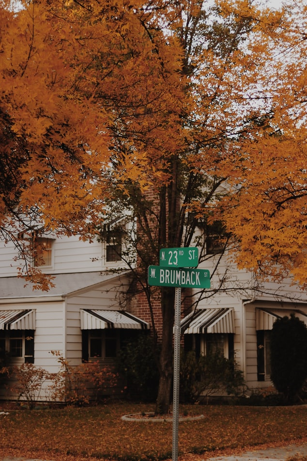 tree and street sign in boise