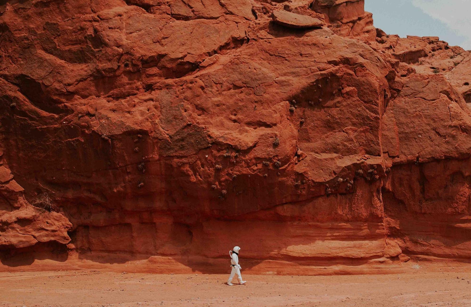 Na Marsu mohl existovat koloběh dusíku. Jeho fixovaná forma byla objevena v jednom z meteoritů
