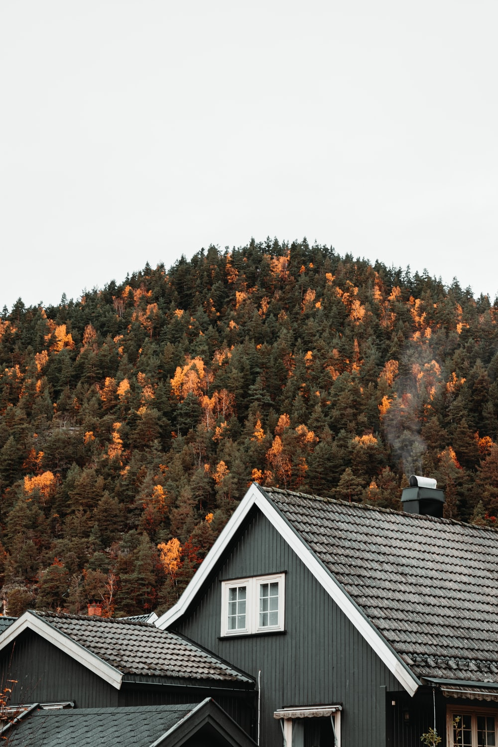 grey house near mountain with trees at daytime