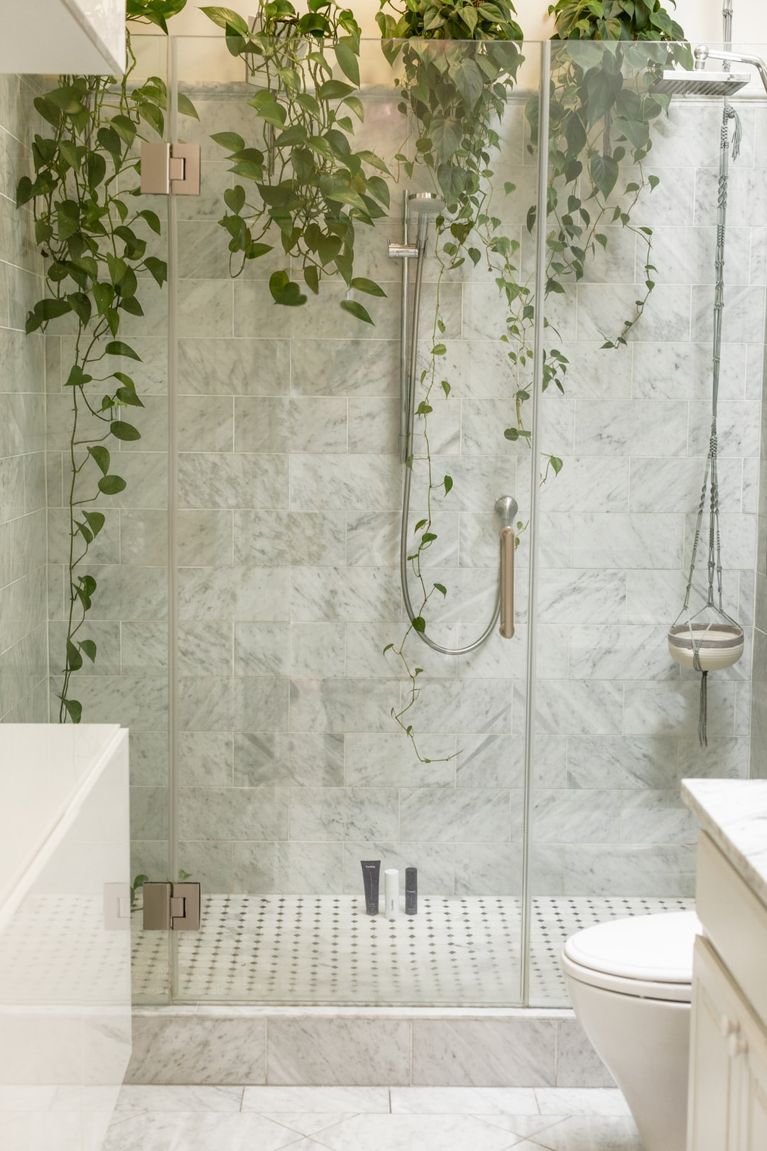 skincare products in glass shower with plants