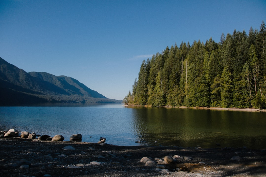 Alouette lake near Vancouver, shot during the summer