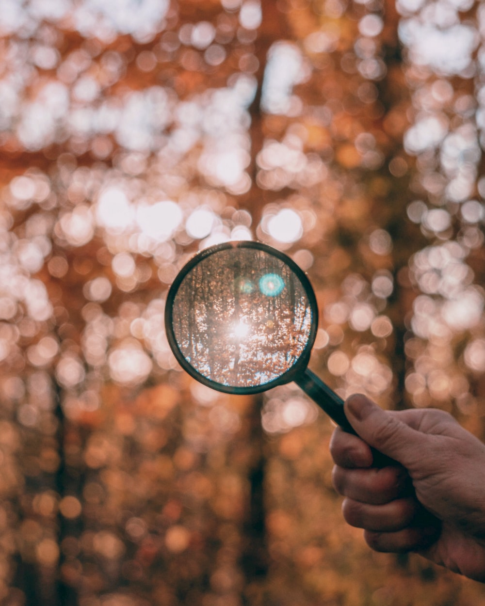 round black and green magnifying glass