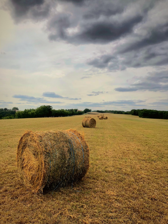 Hay bales in a field in France