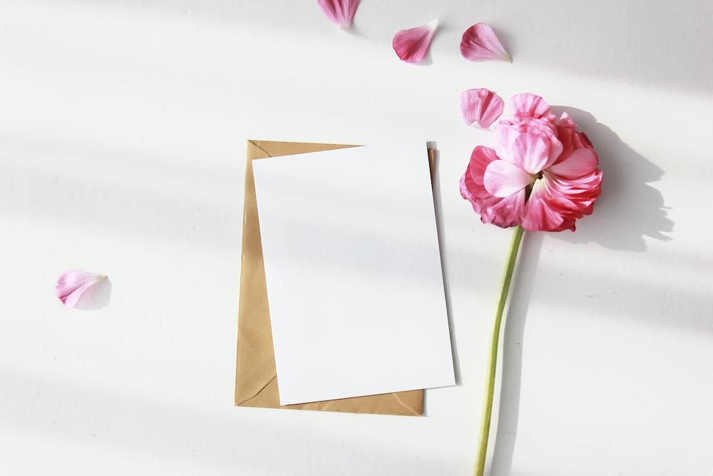white bond paper beside pink petaled flower