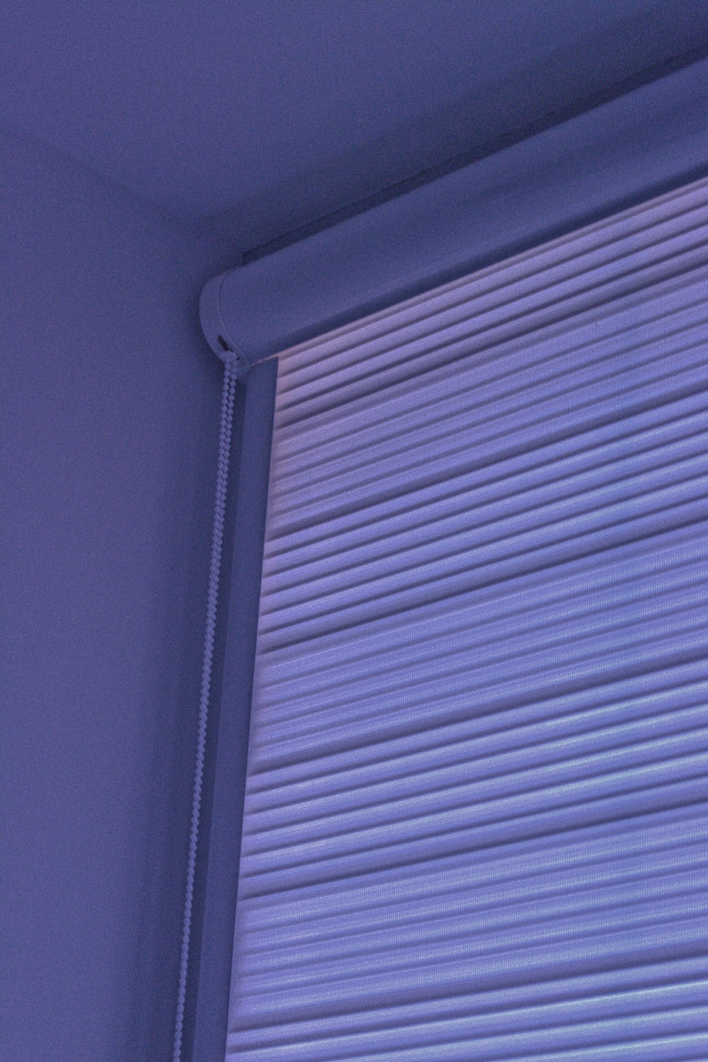 white and black window blinds