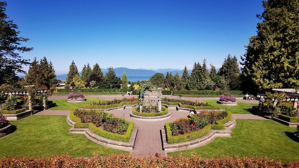 green garden with fountain