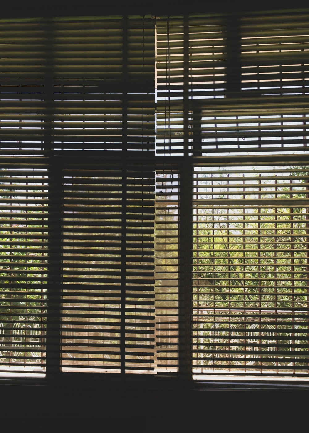 black and white window blinds