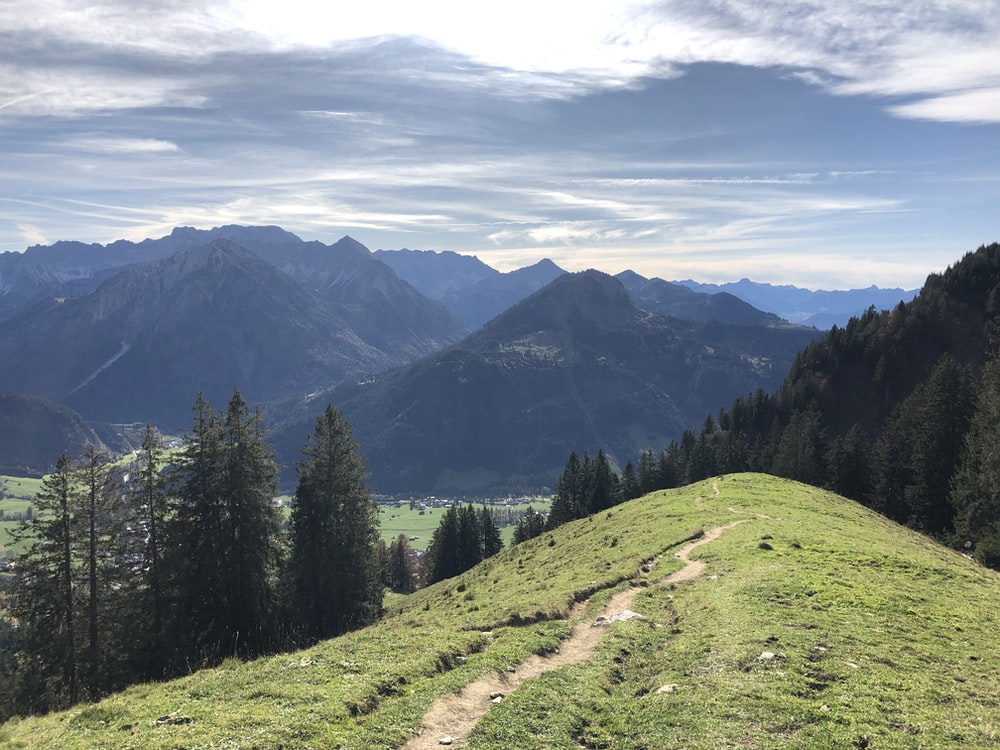 green grasses on hills