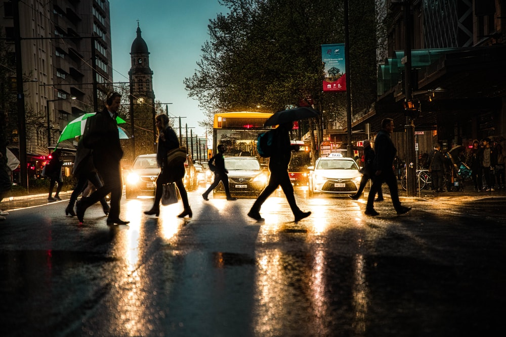 people walking on pedestrian lane during a rainy day
