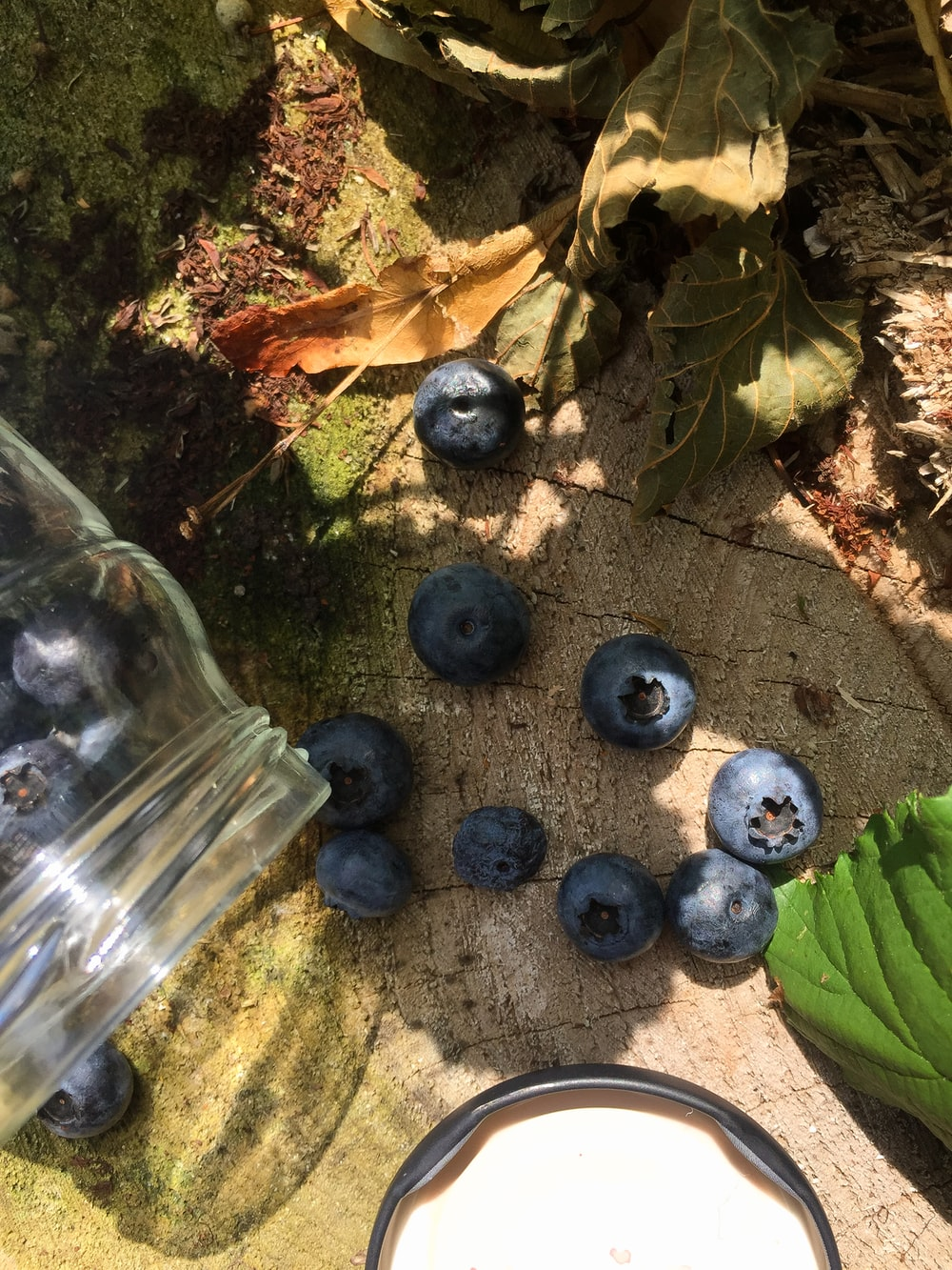 blue berries near cut glass