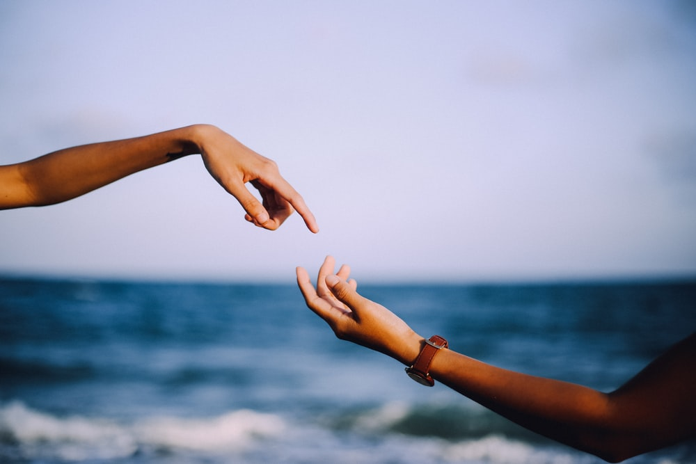 two person holding hands photograph