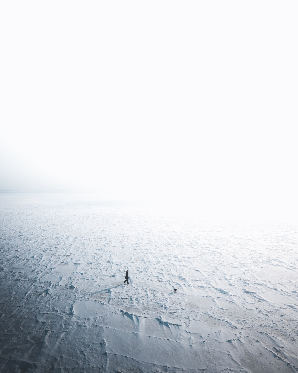person on desert land during daytime