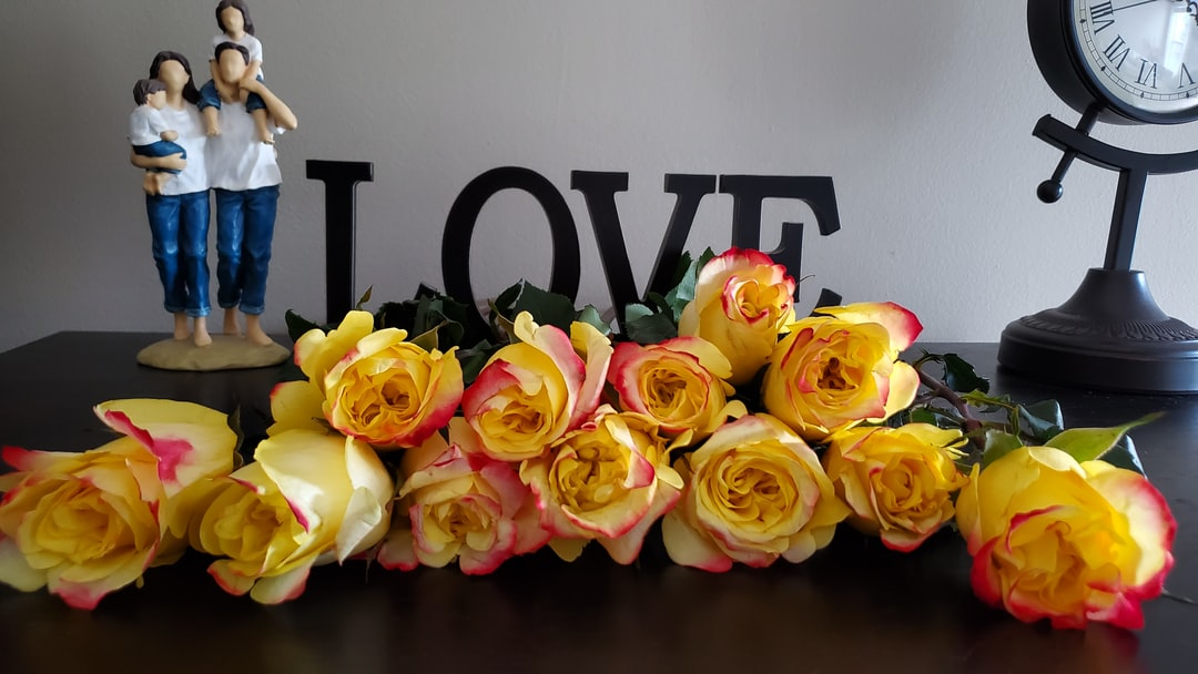 Yellow with Red, Hot Merengue Roses Family Love