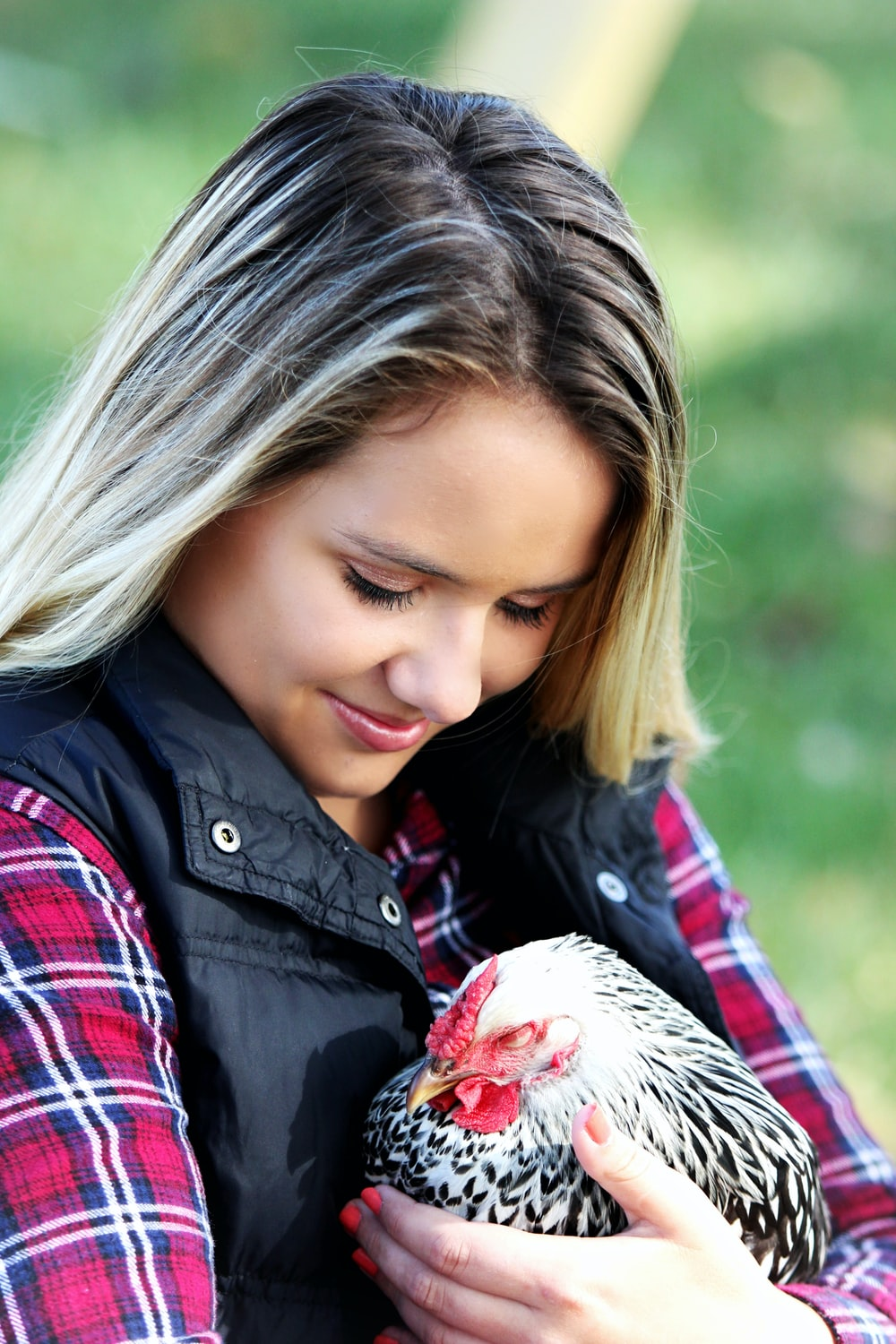 woman in black and red shirt holding white and white chicken