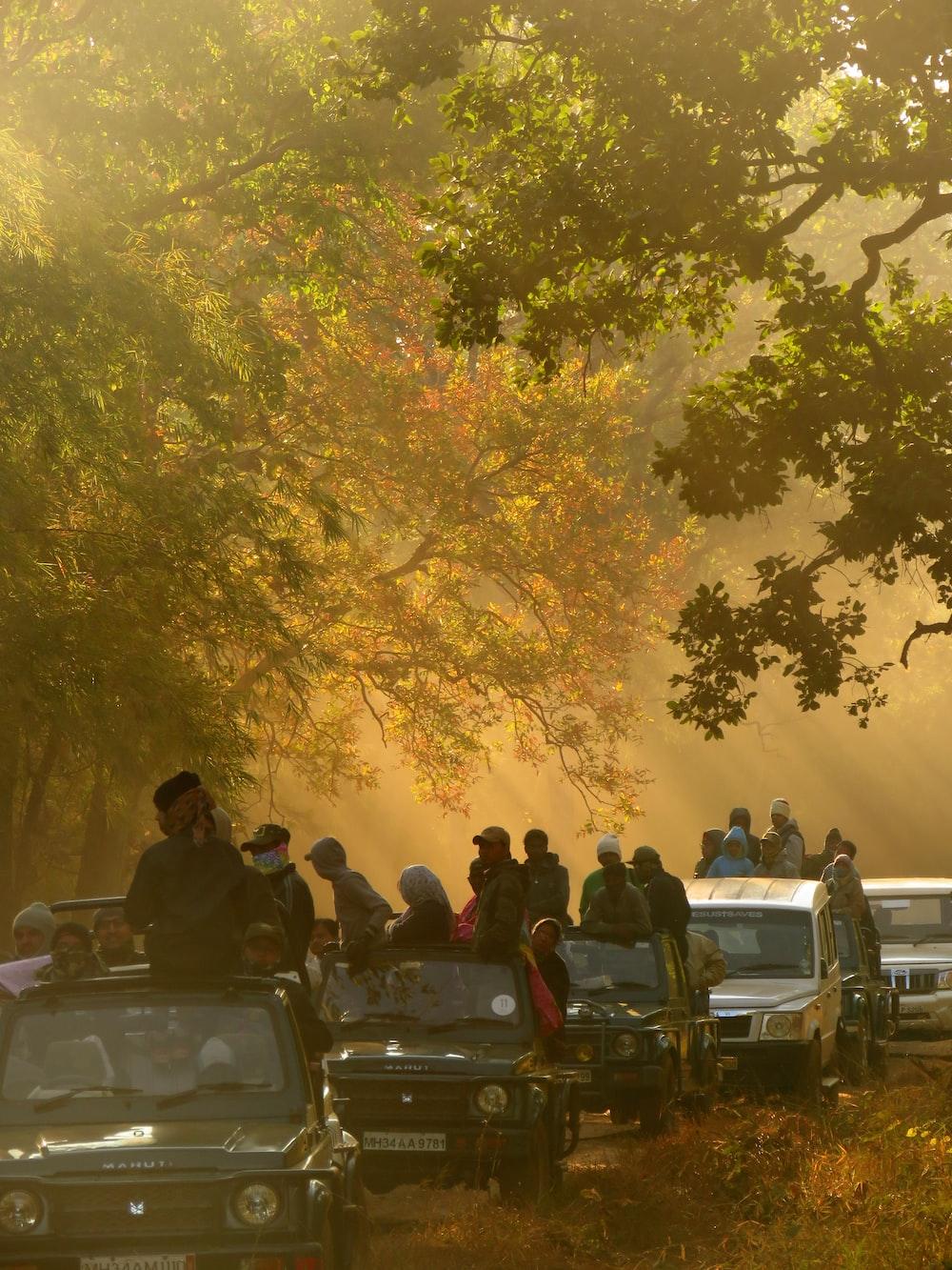 people on cars beside trees