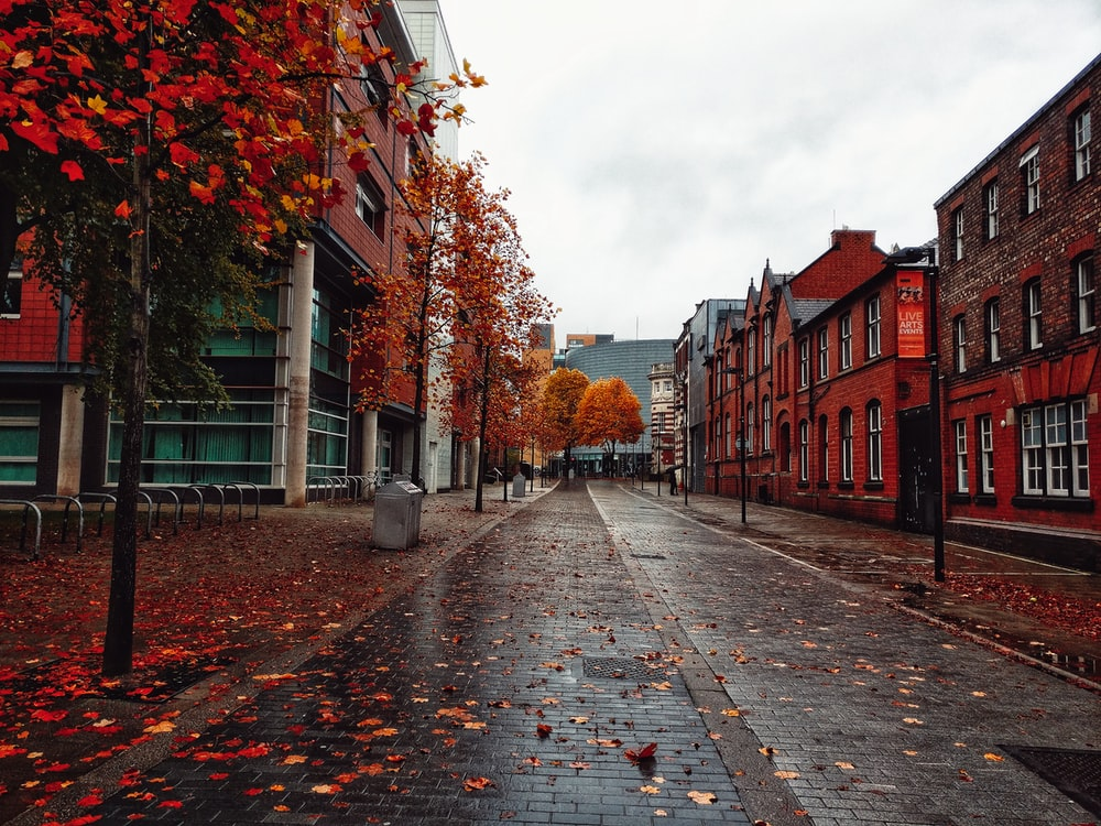 University Of Manchester Pictures | Download Free Images on Unsplash